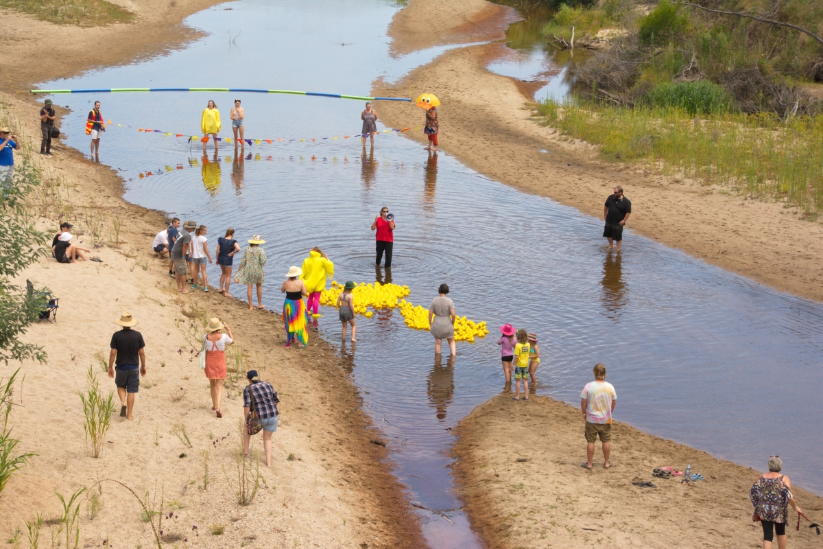 14. duck race on Tambo River