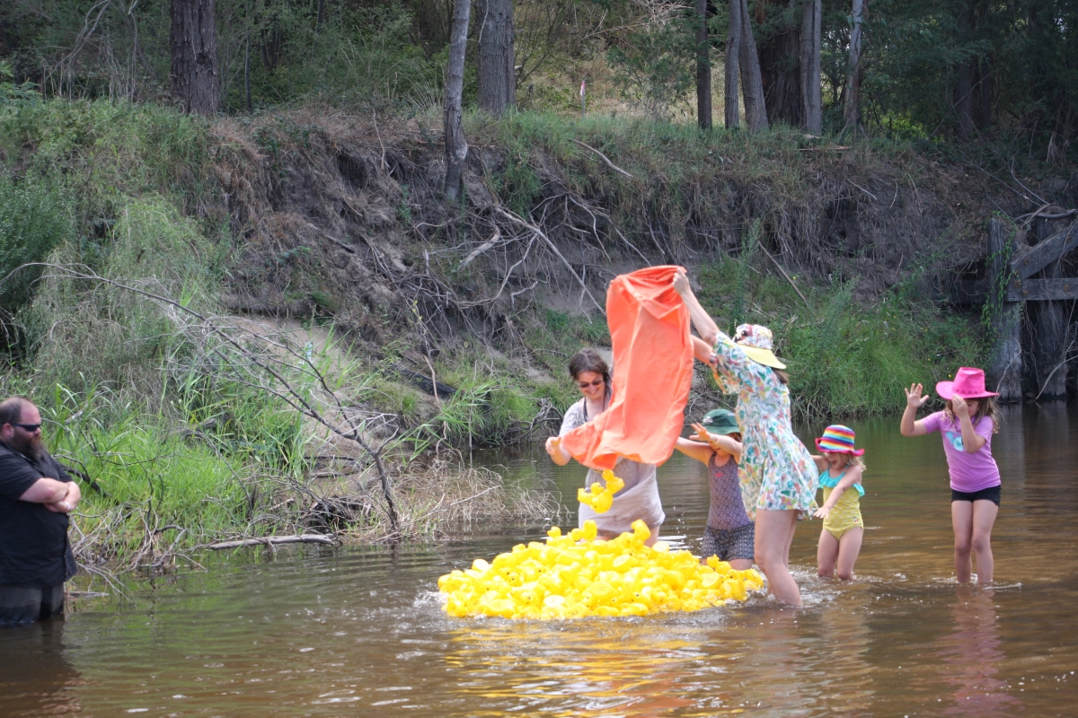 13. duck race in they go!