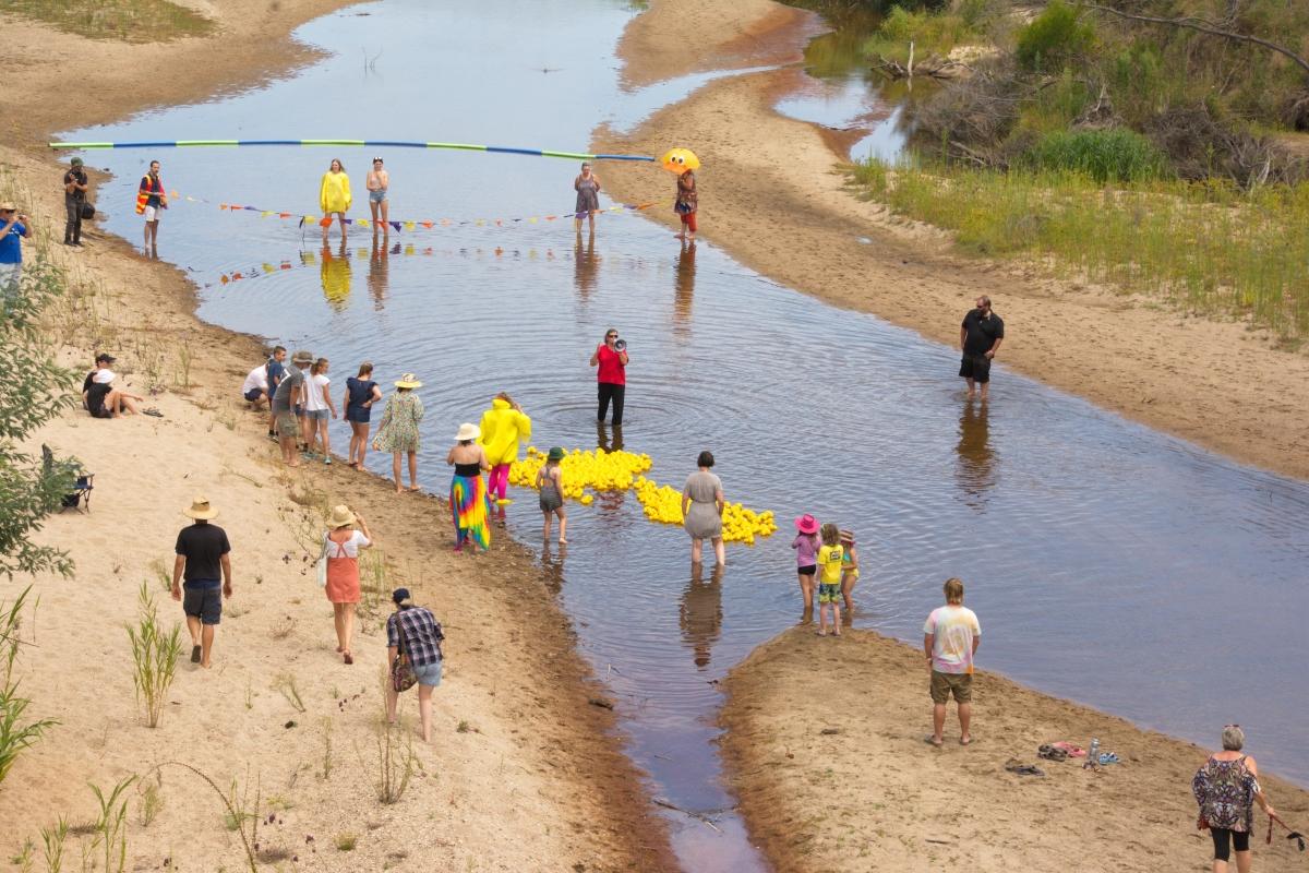 14. duck race on Tambo River